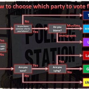 Election Flowchart